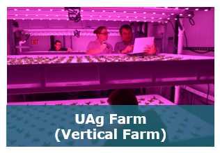 Nav Uag Farm.png